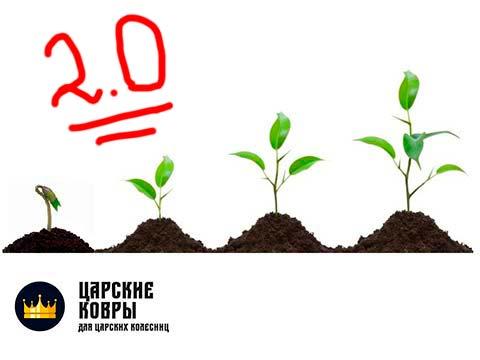 """Рестайлинг сайта """"Царские ковры"""": история перерождения"""