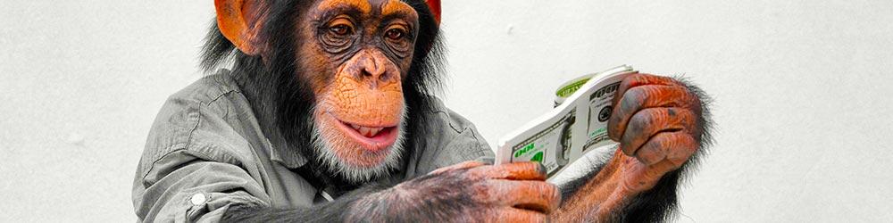 Где зарегистрировать биткоин кошелек?